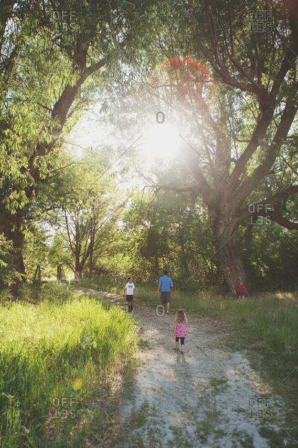 Children explore the nature on summer