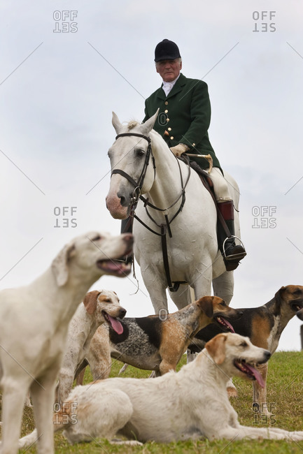 Gloucestershire, UK - August 8,2010: Horseman and hounds