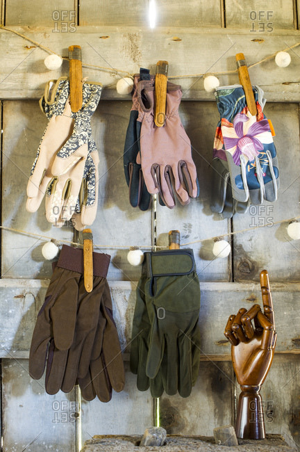 Various gloves hanging in barn
