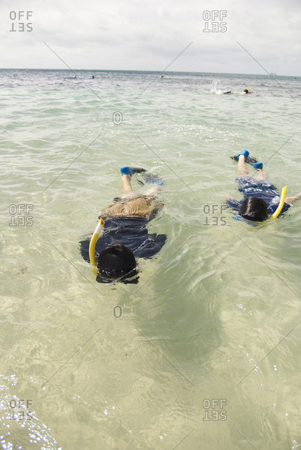 People snorkeling in sea
