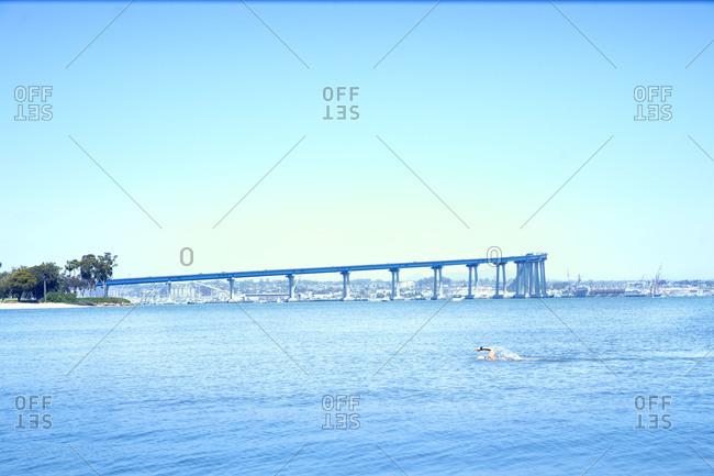 Open water swimmer in the ocean