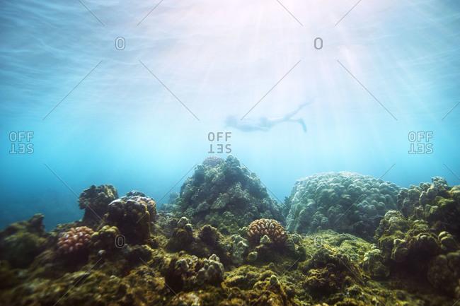 Person snorkeling underwater in Hawaii