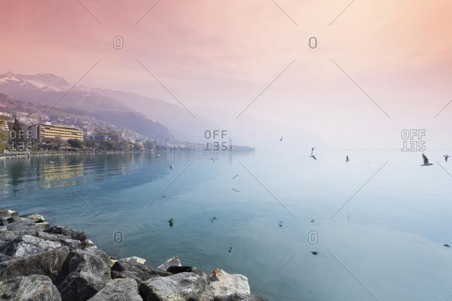 Lake Geneva in the evening