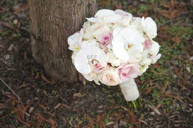 Bridal bouquet left outdoors