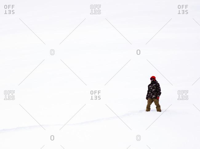 Snowboarder standing in a snowy field