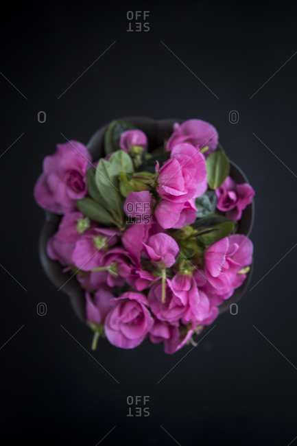 Pink flowers in a pewter bowl.
