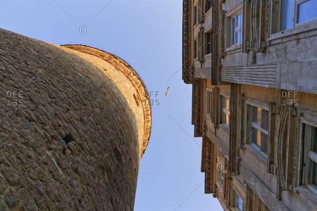 Galata, Galata Tower, house and flying bird, Istanbul, Turkey