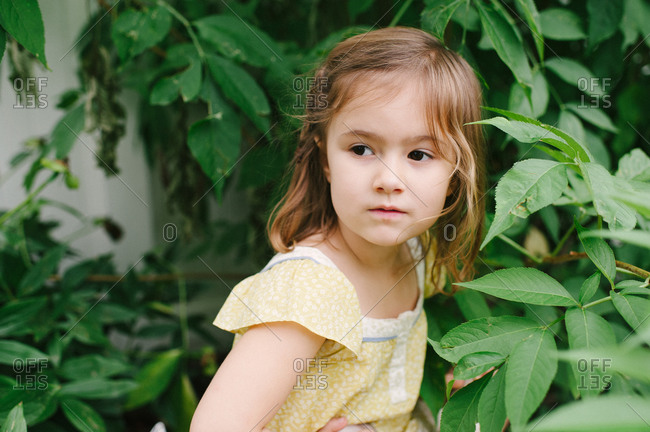 Portrait of a girl among leaves in a garden
