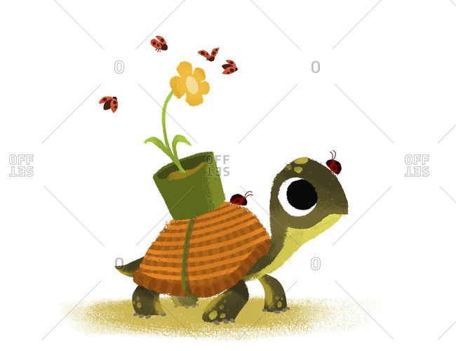 Turtle carrying a flower pot