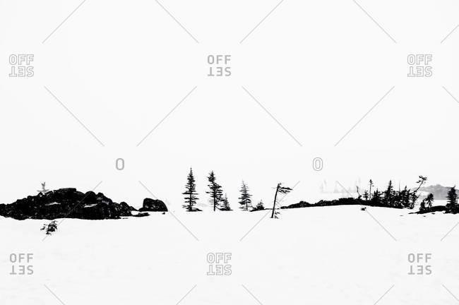 Snowy landscape in Yukon