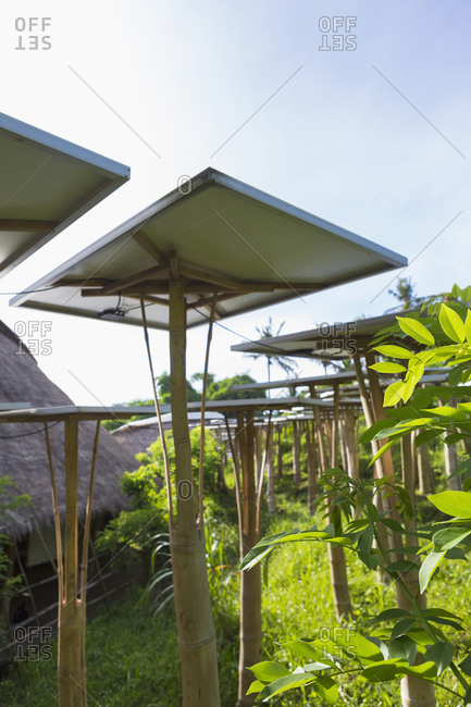 Solar panels in tropical garden