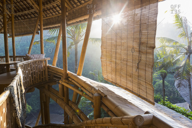 Sun shining on bamboo tree house