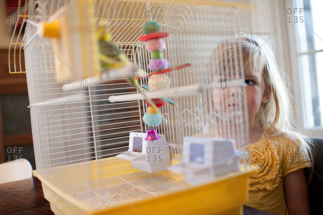 Girl looks suspiciously at pet bird in cage