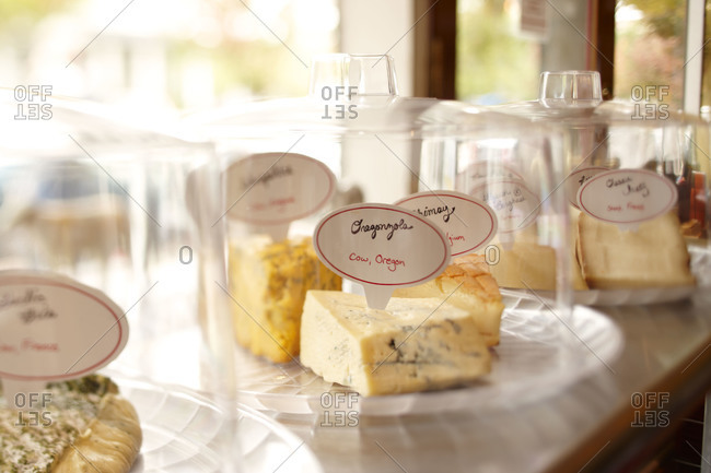 Different type of cheese under glass domes