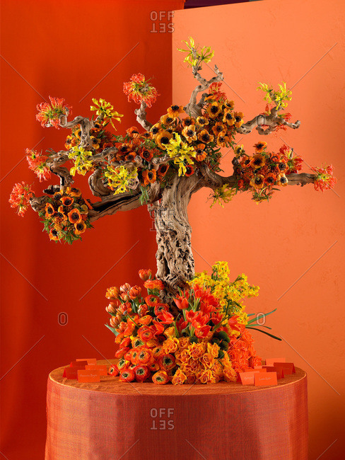 Tree design with blossoming flowers