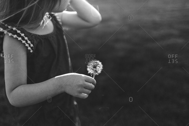 Young girl holing a dandelion seed head on stem