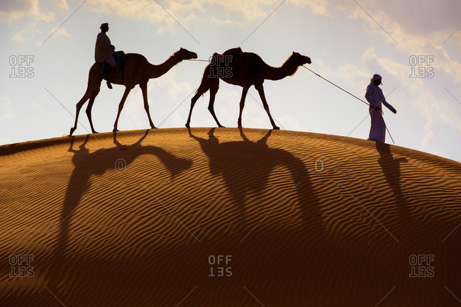 Nomads and camels walk over the dunes at Wahiba Sands, Sultante of Oman