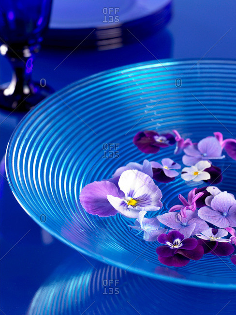 Purple petals floating in blue bowl