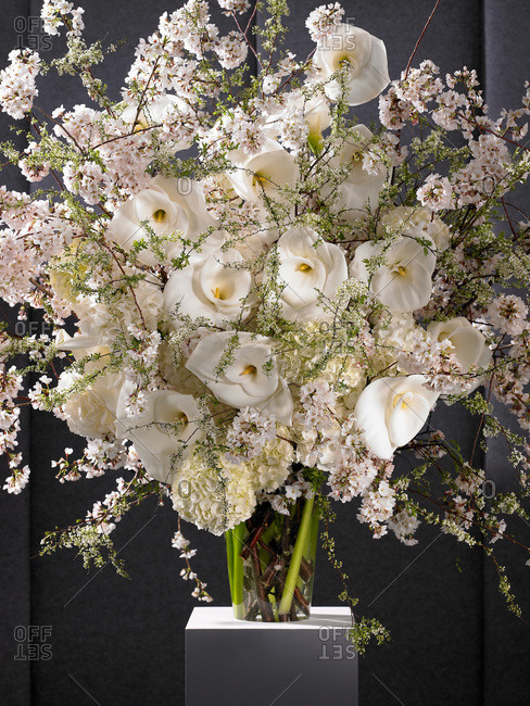 Various white flowers in a vase