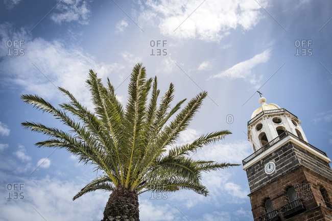 Palm tree and cupola of church, Teguise, Lanzarote, Canary Islands