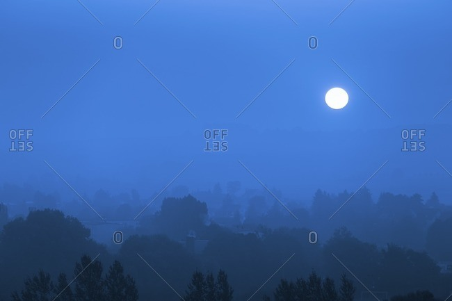 Moon rising over trees and buildings at night