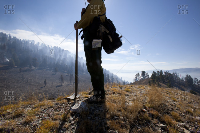 A firefighter surveys the damage caused by a recent forest fire in Jackson Hole, Wyoming