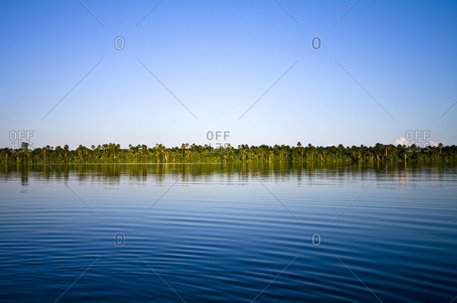 The calm surface of a wide blue lake bordered by the Amazon rainforest on the horizon