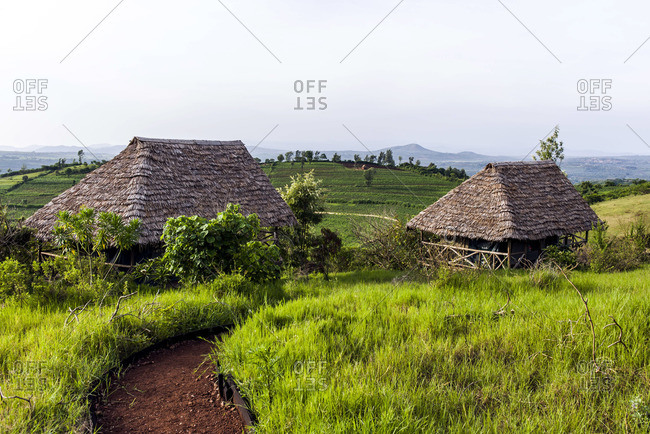 Thatched-roofed safari tents in a lodge overlooking rolling hills covered in farmland