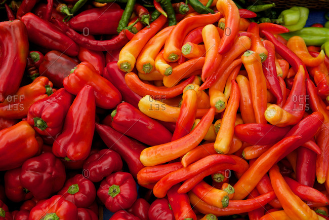 A colorful display of peppers at a farmers market.