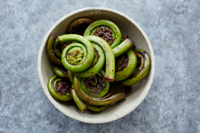 Bowl of fiddlehead greens