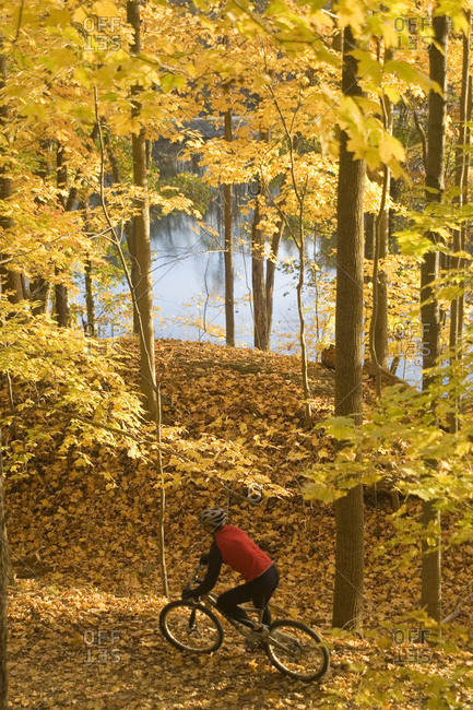 Mountain biker rides on trail in the Fall