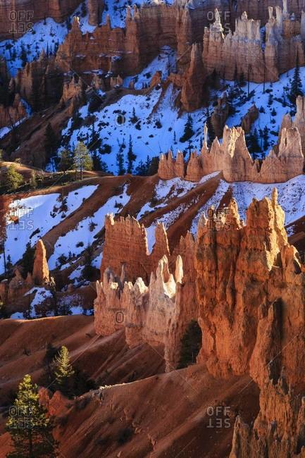 Hoodoos, pine trees and snow lit by strong late afternoon sun in winter, near Sunrise Point, Bryce Canyon National Park, Utah, United States of America, North America
