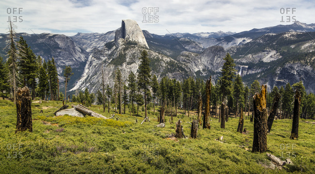 View of mountains at Yosemite National Park