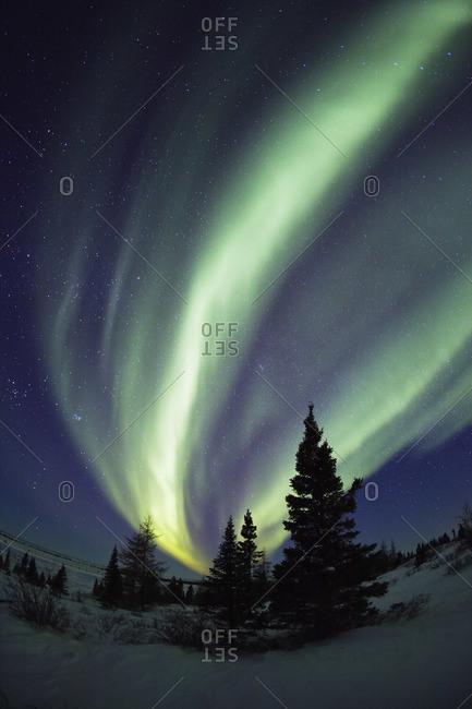 Aurora borealis in Canadian sky