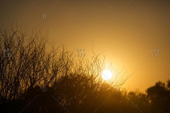 Sunset at Ischigualasto Provincial Park , San Juan, Argentina