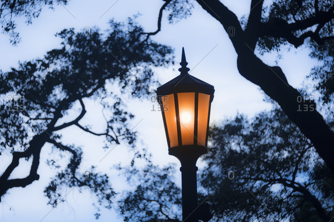 Street light in a park in Savannah