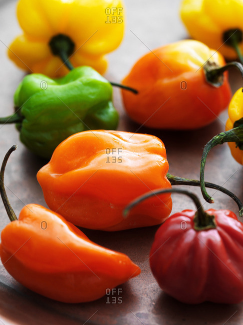 Variety of habanero peppers - Offset