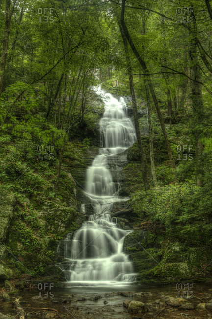 Waterfall in a green forest