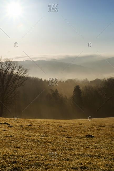 Landscape at morning mist