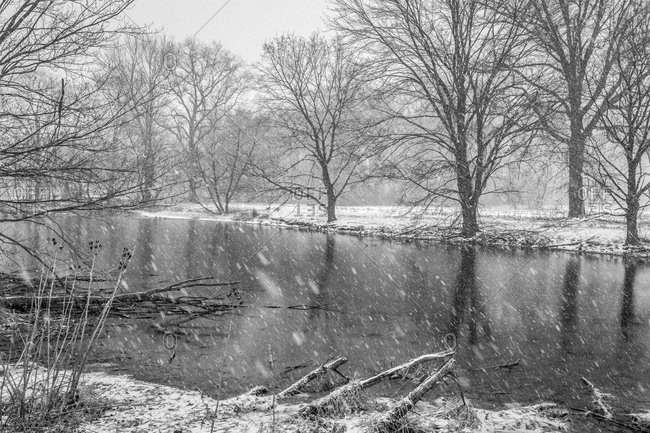 Bare trees on a snow-covered riverside