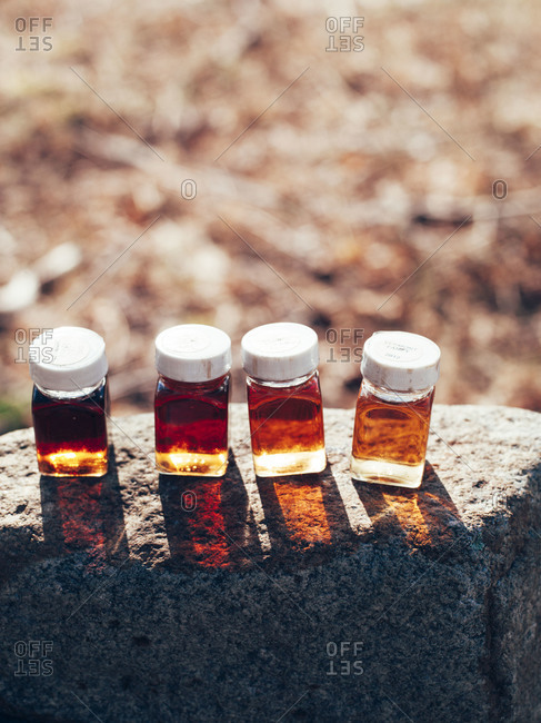 Sample bottles of maple sugar, New Hampshire