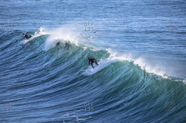 Surfers riding a wave