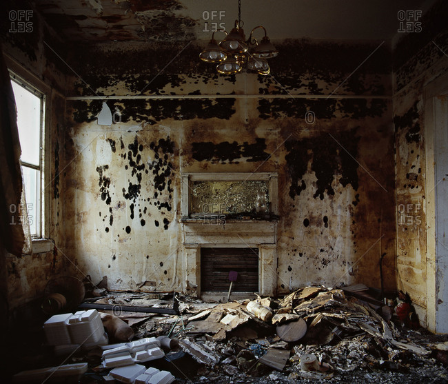 Black mold covers a wall in a home flooded by Hurricane Katrina in the Ninth Ward of New Orleans in February 2006