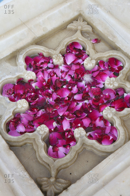 Flower petals floating in a marble form