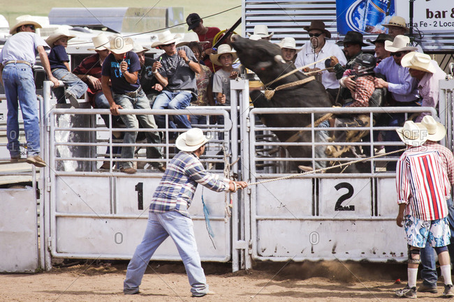 Galisteo, New Mexico, USA - July 18, 2010: Bull riding