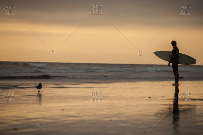 Silhouette of a surfer standing in front of the Pacific Ocean, Huntington Beach, California