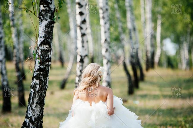 Bride walking in a birch forest