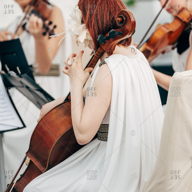 Wedding musicians at a party
