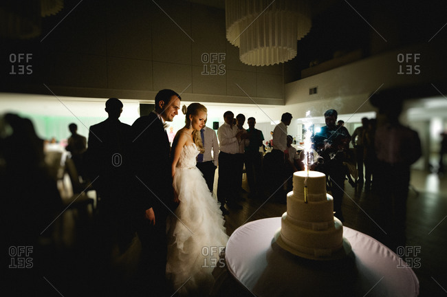 Newlywed couple about to cut the wedding cake