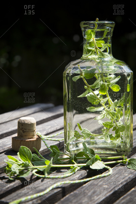 Oregano vinegar in a glass bottle